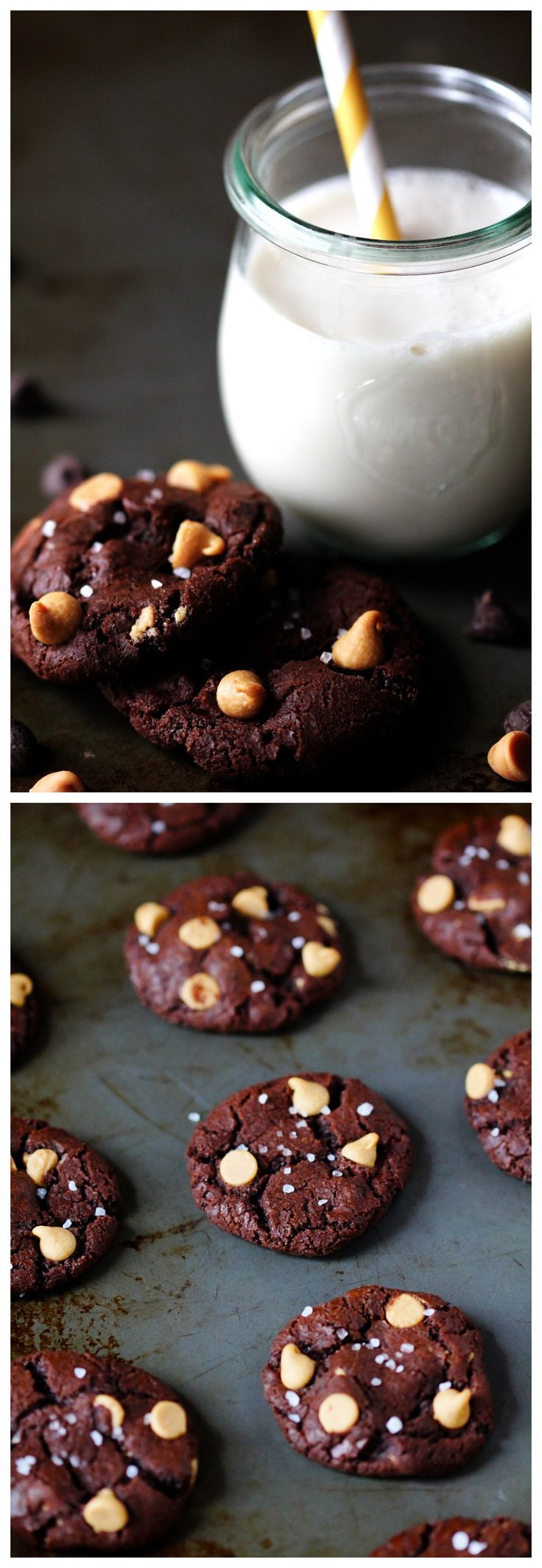 Salted Chocolate Peanut Butter Cookies -- just as wonderful as they sound | gimmesomeoven.com #cookies #dessert #chocolate