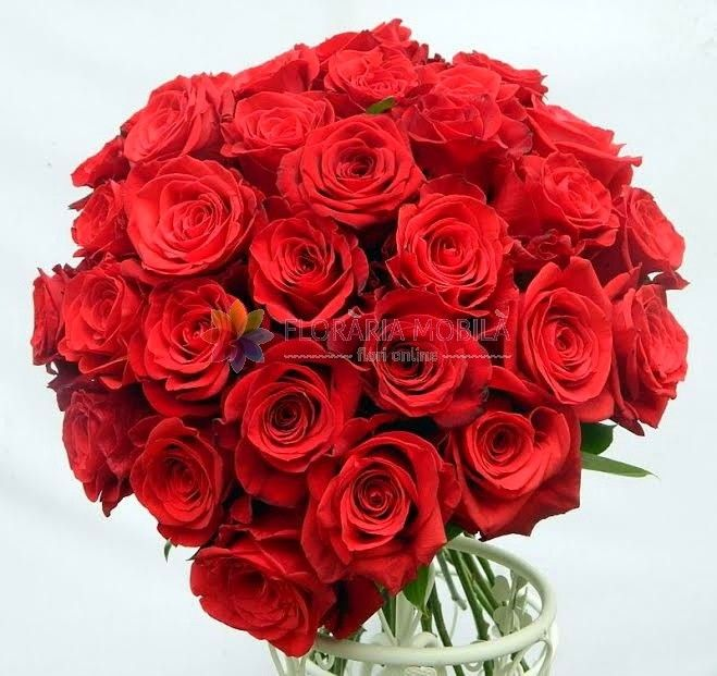 buchet 33 trandafiri 33 red roses bouquet