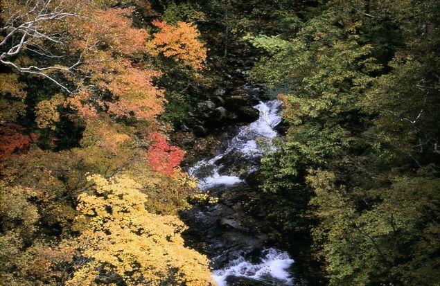 北海道 五色渓谷の紅葉