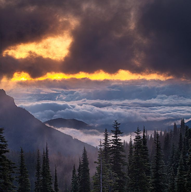 Break in the Weather ... Hurricane Ridge in Olympic National Park, Washington   photo by Stan Rose Images