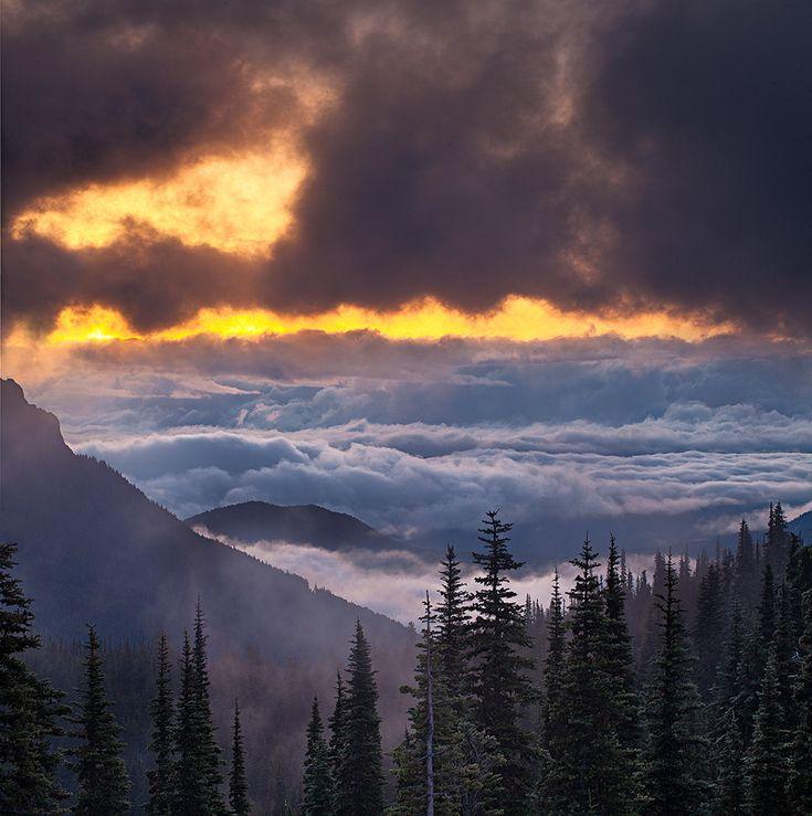 Olympic National Park,Washington,hurricane ridge,sunrise, photo