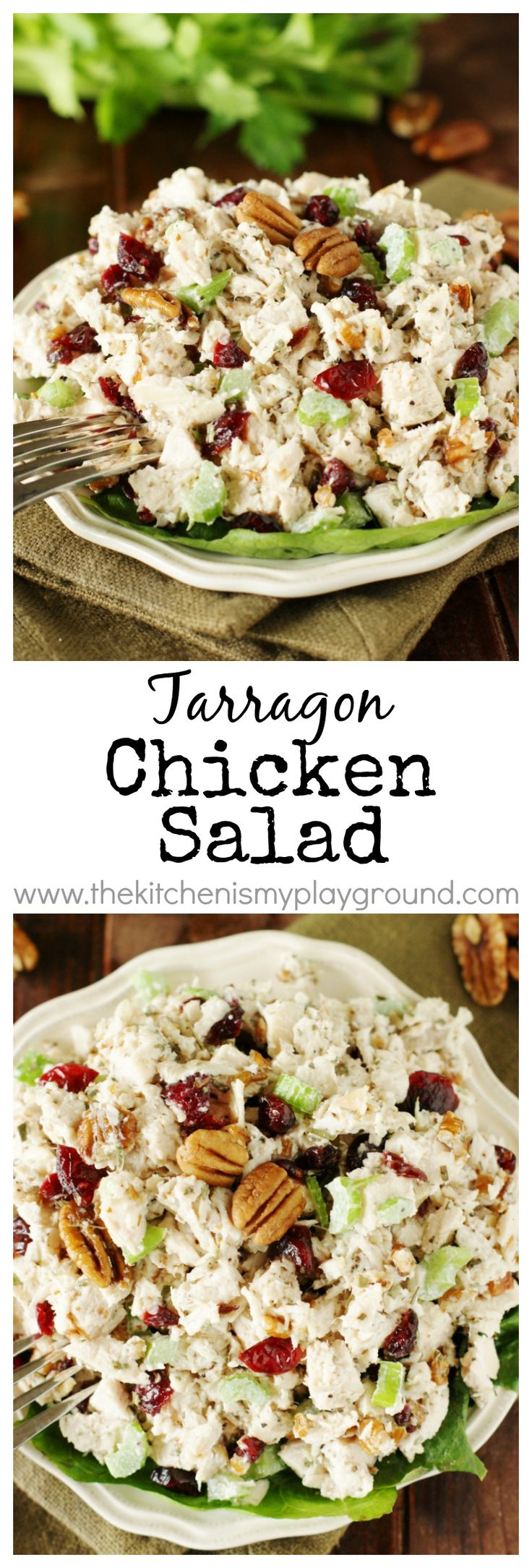 Tarragon Chicken Salad ~ Loaded with big flavor from tarragon, dried cranberries, and chopped pecans.  Perfect over greens or in {the best} chicken salad sandwiches!   www.thekitchenism...