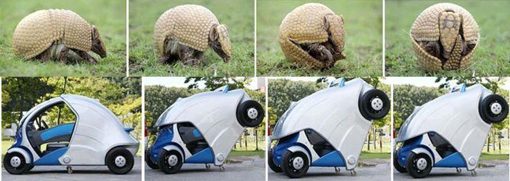 biomimicry - Google Search