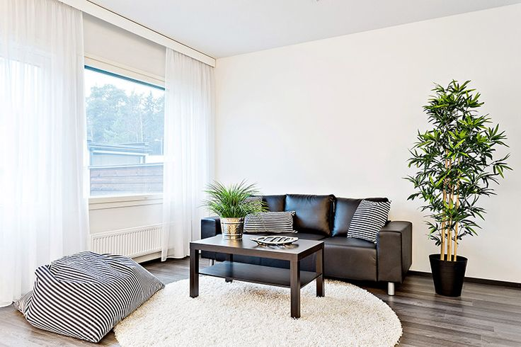Raikkaan valkoiseen olohuoneeseen tuotu ripaus väriä viherkasveilla.