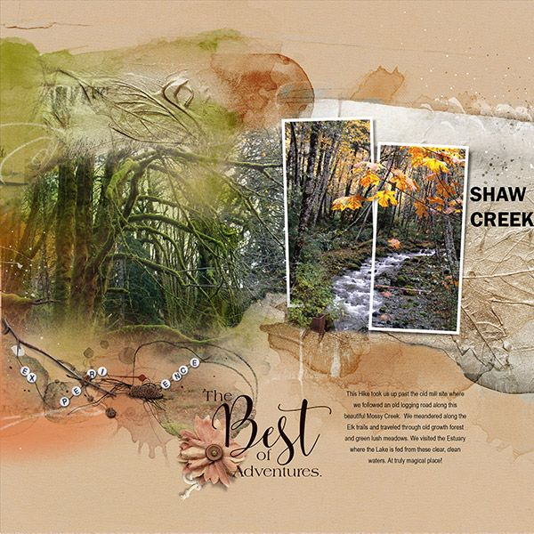 Shaw-Creek Hiking to Shaw Creek was a wonderful trip to a magical place, with crystal clear waters and moss covered trees and rocks.    I used Anna Aspnes Designs ArtPlay Palette Hinterland [ link ]   ArtsyLayered Template No. 236 [ link ]   Adventure WordArt Mix No. 1 [ link ]