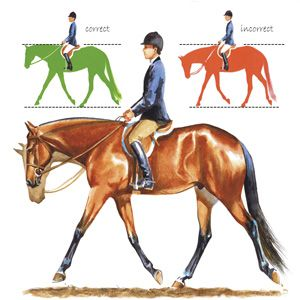 Self-carriage depends on the horse's training development, as well as his physical fitness. Jean Abernethy illustration