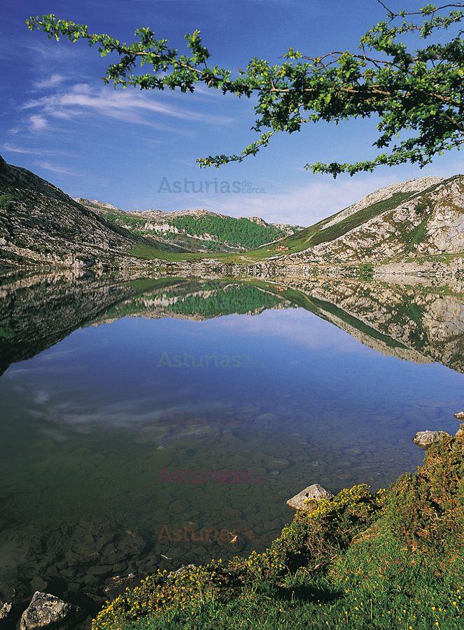 M s de 25 ideas incre bles sobre reflejos en el agua en for Ariadne artiles reflejos