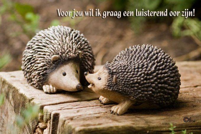 Voor jou wil ik graag een luisterend oor zijn! www.relicards.nl