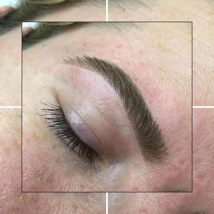 What Makeup To Use For Eyebrows | Design Eyebrow S…