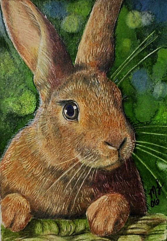 Cute Bunny Rabbit Miniature Art by Melody Lea by MelodyLeaLamb (Art & Collectibles, Prints, Giclee, giclee, animal art, cute, wildlife, realistic, colorful, charming, bunny, rabbit, easter, green, melody lea lamb, melody lamb)