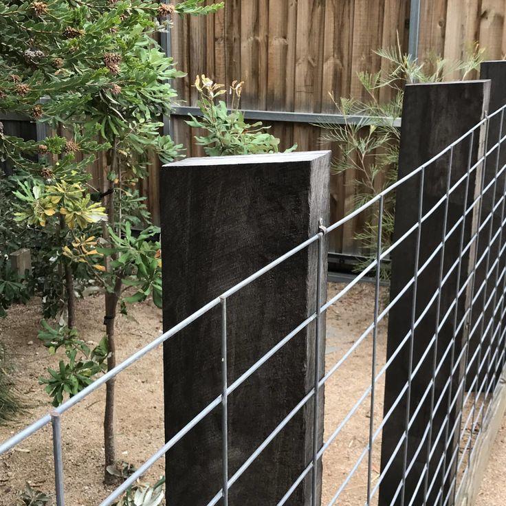 Moderner Einheimischer Garten Native Garden Vegetable Garden Design Australian Garden Design