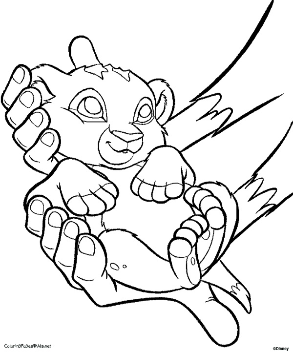 baby lion coloring pages - 147 best coloring pages images on pinterest adult