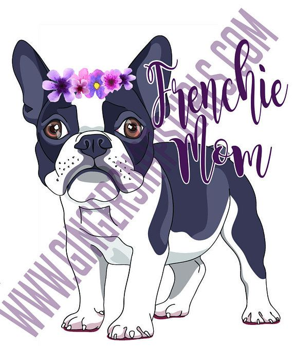 Iron on Ready Sublimation transfer French Bulldog Ready to press DIY iron on Ready to Press Iron on Transfer htv printed