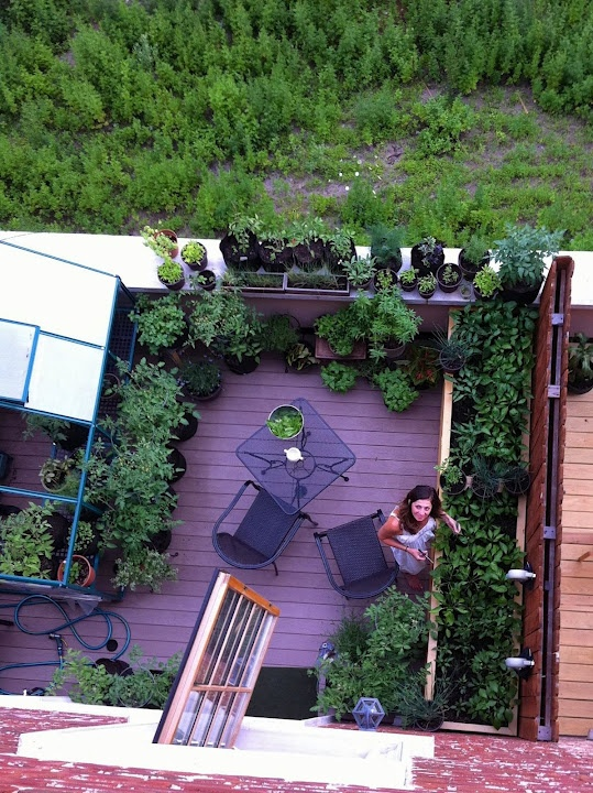 Me in my garden red hook brooklyn jardin pinterest for 11 terrace place brooklyn