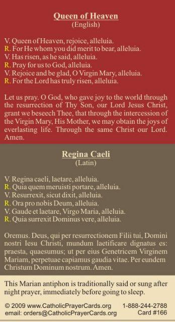 BILINGUAL* Regina Caeli Prayer Card (Latin/English ...