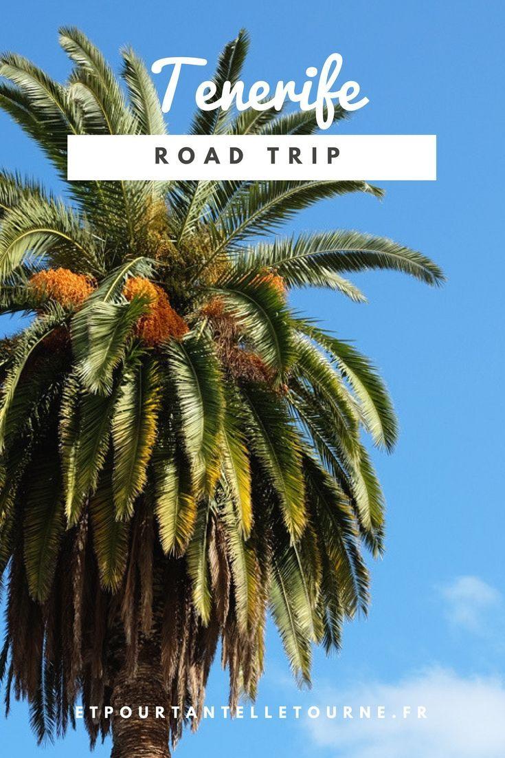 Conseils, bons plan et bonnes adresses pour organiser votre road trip sur les îles Canaries à Tenerife