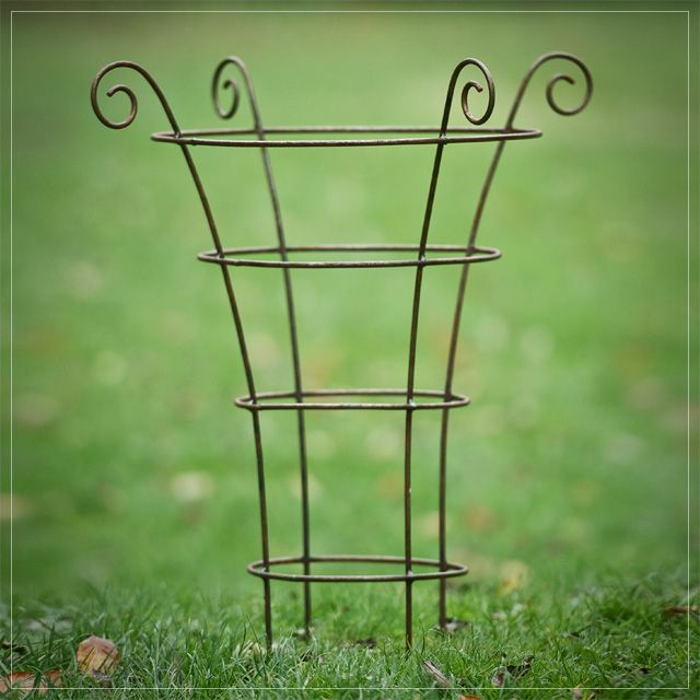 Gift Ideas – Rusted Iron Medium Plant Support – Mabel & Rose – Vintage garden and country living