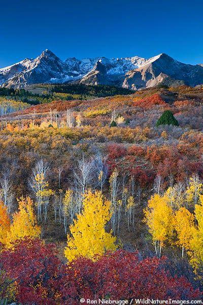 San Juan Mountains Dallas Divide Colorado Ron Niebrugge http://www.my-photo-blog.com/