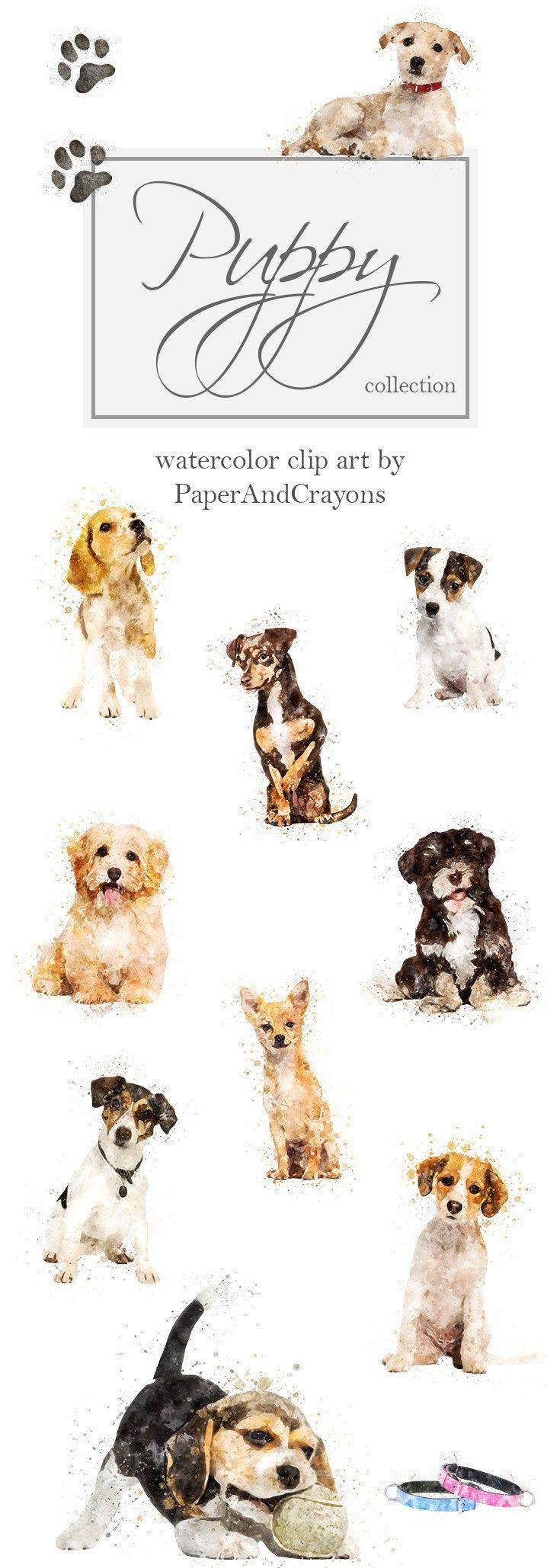 Watercolor Puppies, Dog Clipart, Puppy Clip Art, Animal Graphics, Terrier, Havanese, Chihuahua, Beagle, PaperAndCrayons, Digital Download