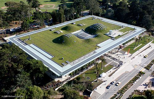 California Academy of Sciences - Renzo Piano