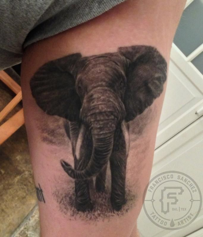 realistic elephant tattoo by Francisco Sanchez -  I did this realistic elephant tattoo on a local client from Dallas, he got it because his mother l