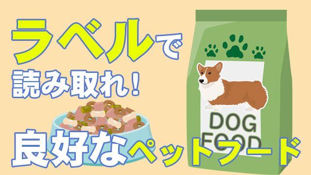 ここに注目 ペットフードのラベル 少しの知識で変わる犬の健康 2021 ペットフード ドッグフード 犬