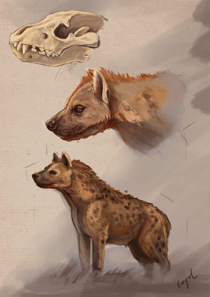 hyena - digital art