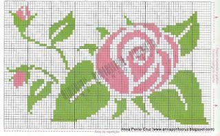 ROSA+16.jpg (320×198)