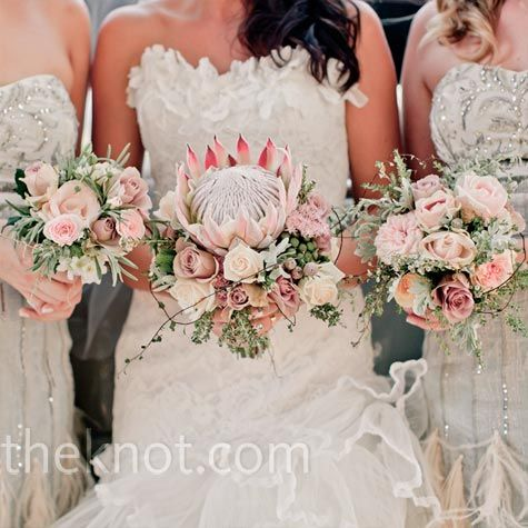 Amy carried roses and a pink king protea (the national flower of South Africa), while her bridesmaids held smaller bouquets of proteas.