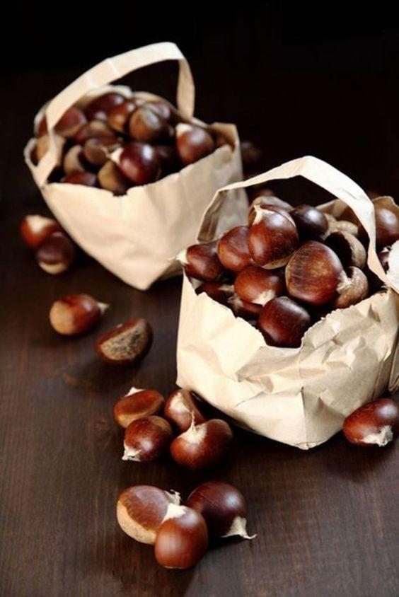 Kastanie / Chestnut + Nüsse / Nuts