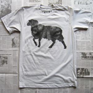 Wolf In Sheep's Clothing Shirt by Random Objects