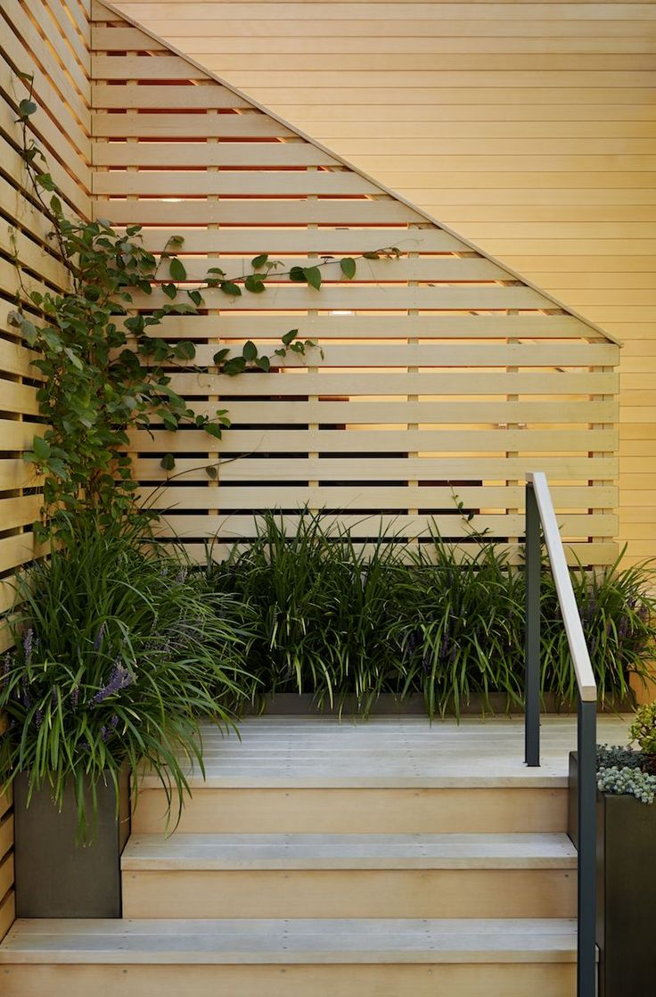 """Architects' Garden Privacy Screens   Gardenista/In a Marin County, California home, Scott Lewis used Alaskan yellow cedar boards as privacy screens at several levels. """"Screening was key, as the house is very close to the road and to a two-story wall of the neighbor's garage that borders the entry garden,"""" he says."""
