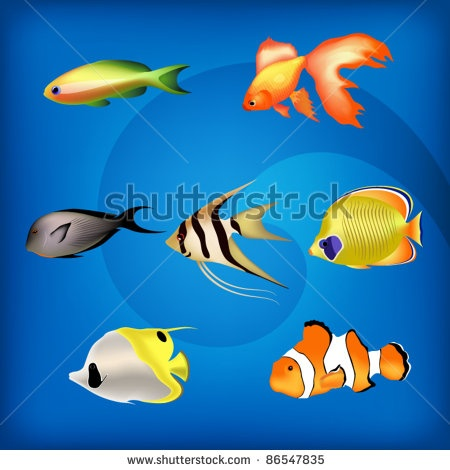 Google Image Result for http://image.shutterstock.com/display_pic_with_logo/789406/789406,1318502411,2/stock-vector-collection-of-various-exotic-fish-illustrations-against-deep-sea-background-86547835.jpg