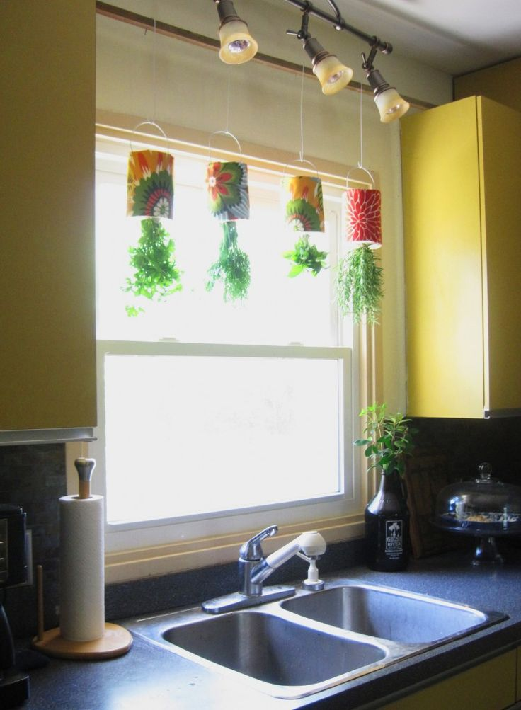 DIY hanging herbs from coffee cans