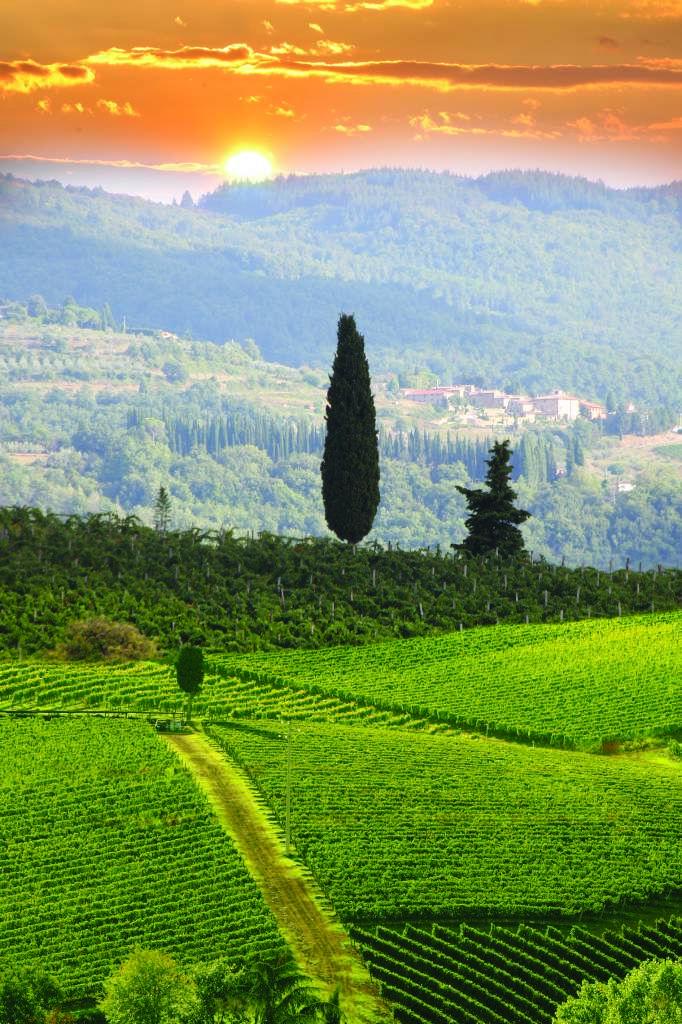 Sunset in Chianti, Tuscany, Italy