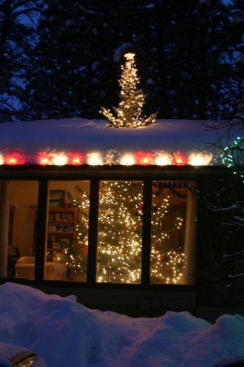 Christmas Tree Outdoor Lights