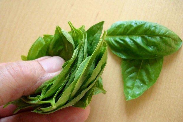 Βράζουμε το νερό με φύλλα βασιλικού και πιείτε το σε περίπτωση πονόλαιμου. 2. Αποξηραμένος Το αφήνετε στον ήλιο και να γίνει σκόνη. Αυτό μπορεί να χρησιμοποιηθεί για το βούρτσισμα των δοντιών. 3. Λαμβάνοντας φύλλα βασιλικού μαζί με το μέλι για έξι μήνες, θα απομακρύνει τις πέτρες στα νεφρά μέσω του ουροποιητικού συστήματος. 4. Πάρτε 1/2 κουταλάκι του γλυκού αποξηραμένα ή φρέσκα φύλλα βασιλικού σε νερό και καταναλώστε το. Είναι χρήσιμο σε απαλούς δυσπεψία.