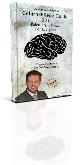 Paleo Gehirn-Pflege Guide 2.0 Paleo Brain Power For Everyone Pragmatiker Edition [Kindle Edition]