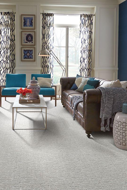 Inspirational Best Carpet for Basement Family Room