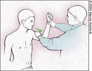 Good Shoulder Info... ... ... ... ... ... .... The Painful Shoulder: A Clinical Eval