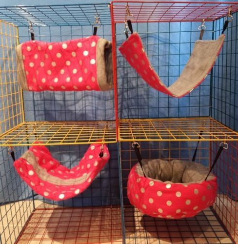 Ferret/Rat/Sugar Glider/guinea Pig Hammock Bedding Set - Pink Polka Dots Print!   Piggy Memes   Guinea pigs, Guinea pig toys, Diy guinea pig cage