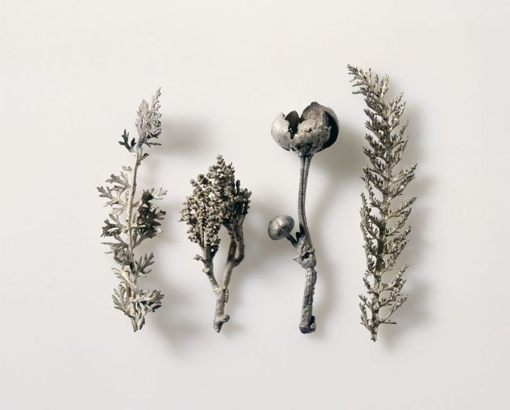 Natural Casts of Four Plants, 1540-50. Silver cast. Nuremberg. German National Museum