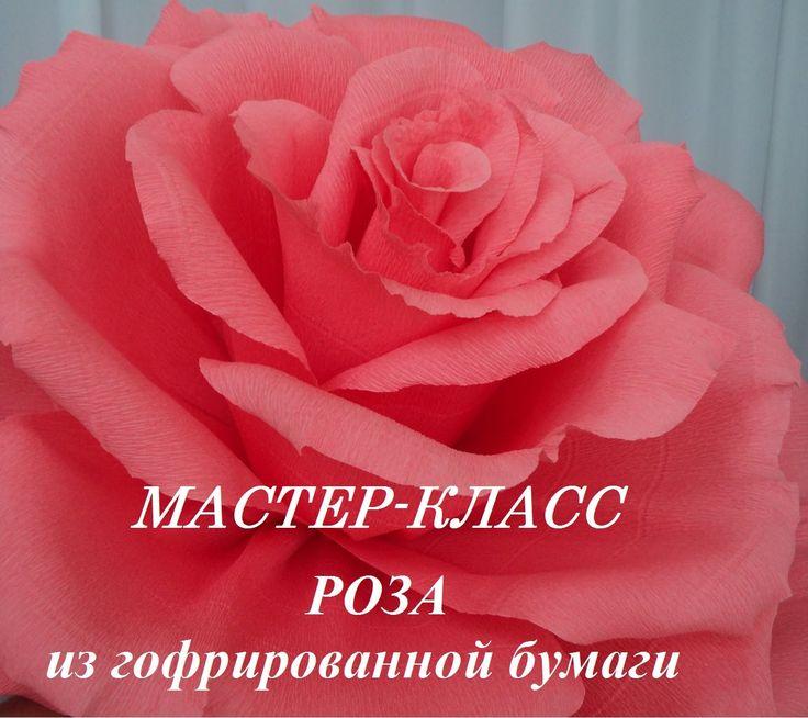 РОЗА МАСТЕР КЛАСС