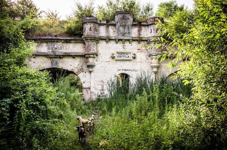 Fortul 1 - Chitila © Mihai Petre