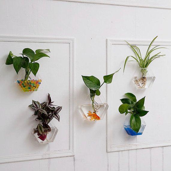 Set di 5 terrari di parete esagonale / / parete pesce ciotola / / indoor fioriere da parete / / piante verdi parete vaso / / parete art