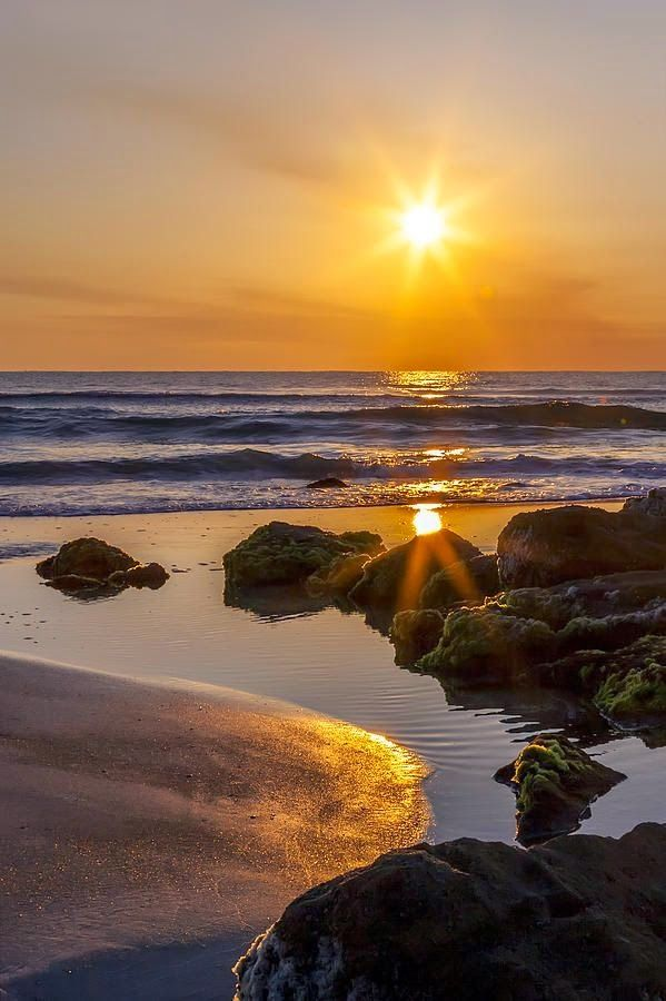 36 best images about Beautiful Florida Sunrise on ... - photo#12