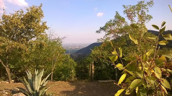 Colli Euganei - Monte Orbieso - Valsanzibio