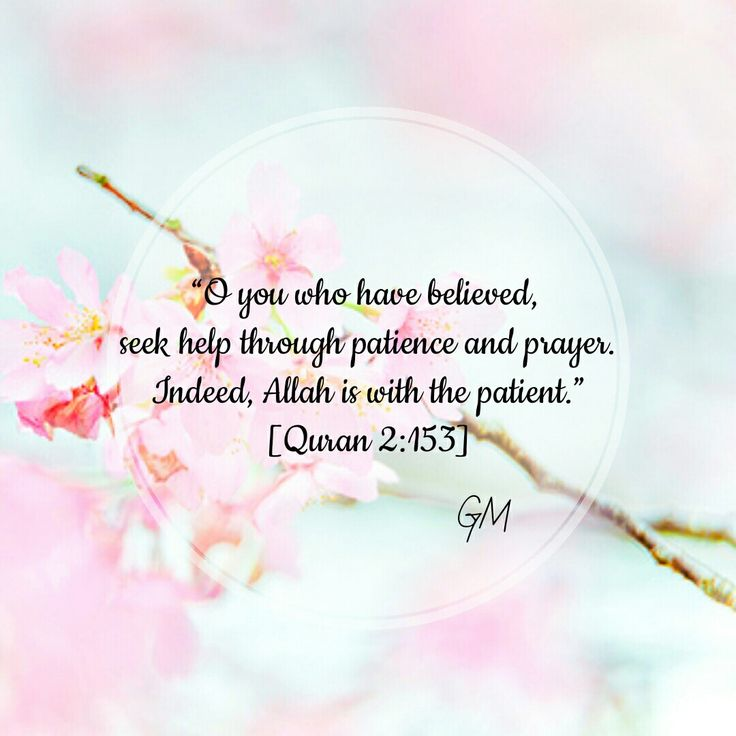 """""""O you who have believed seek help through patience and prayer. Indeed, Allah is with the patient."""" [2:153]"""