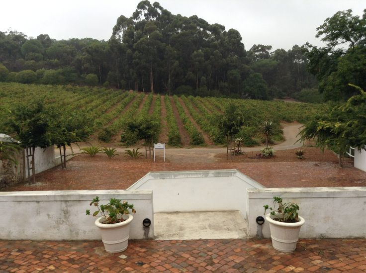 Diamant Estate on a rainy day. Paarl | Guesthouse | Wedding Venue | Western Cape