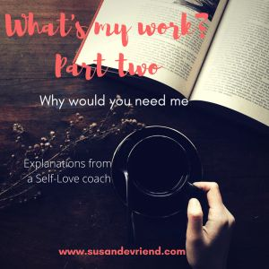 What is my work and WHY you would need me. Part two.